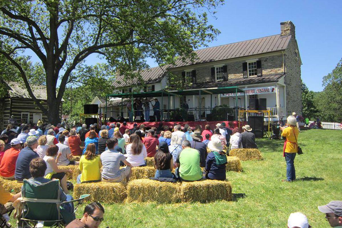Image result for Delaplane Strawberry Festival