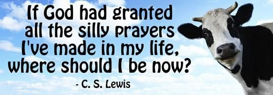 """If God had granted all the silly prayers I've made in my life, where should I be now?"" — C.S. Lewis"