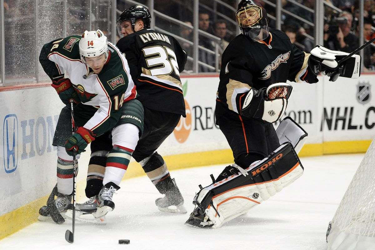 Look at the Minnesota Wild steal! Caught in the act, my friends!!!!