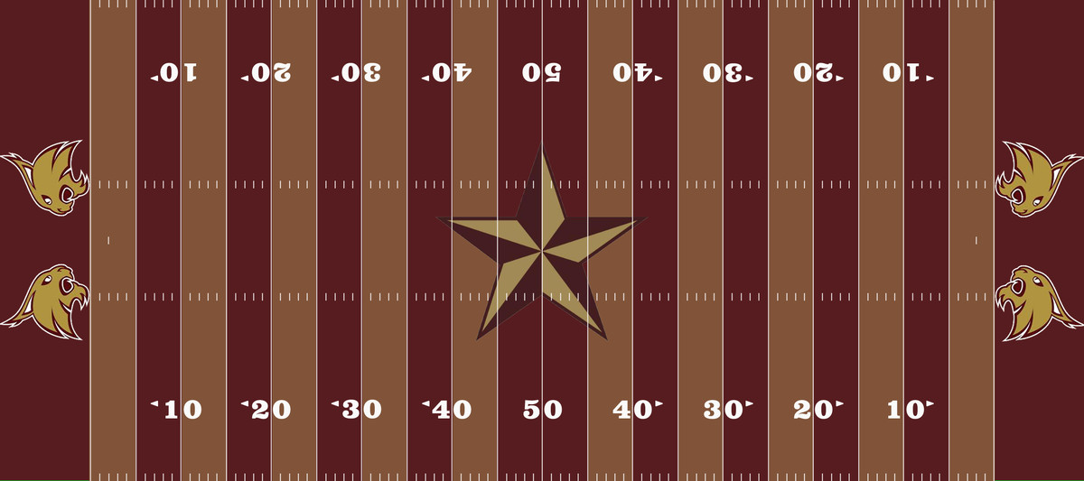 Texas State Field