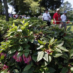 Spectators walk along the sixth fairway during a practice round for the Masters golf tournament Monday, April 2, 2012, in Augusta, Ga. Due to an unusually warm Spring, the azaleas and dogwoods that usually provide a colorful backdrop have already bloomed.