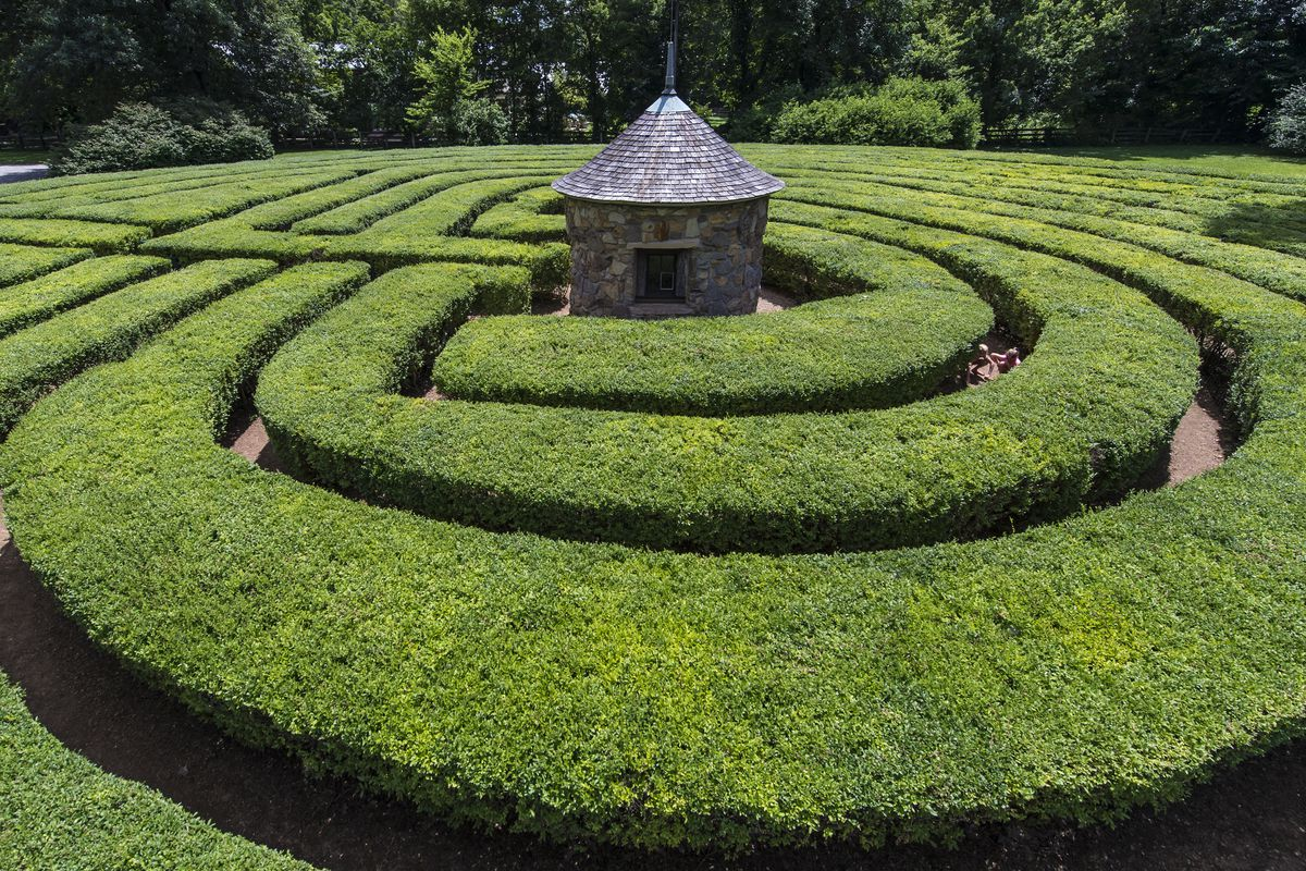 Green hedge maze with a small hut in the center