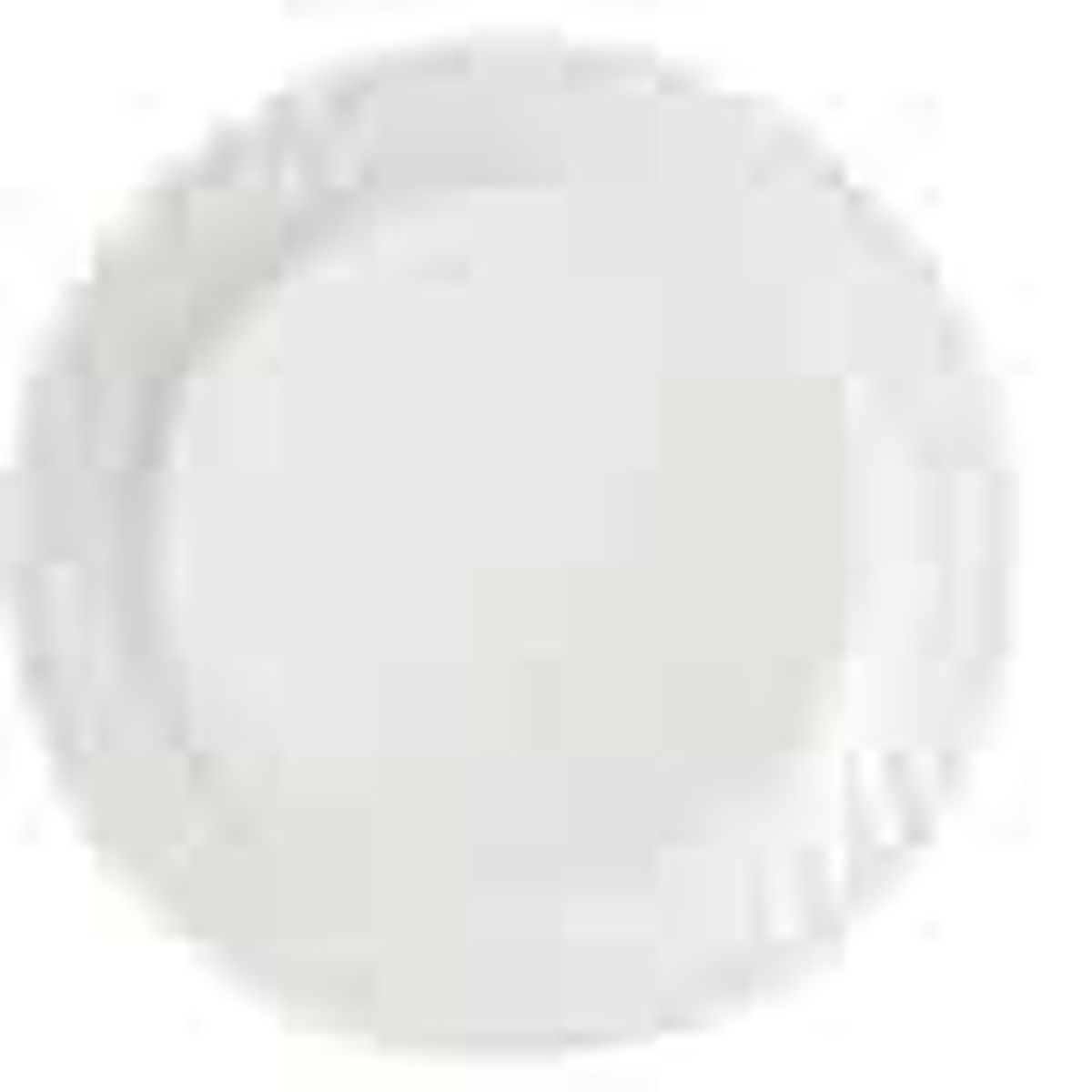 Dinner plate with flat center