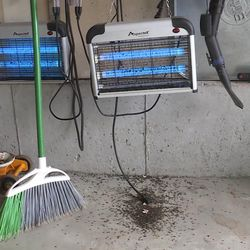 Flies can be found in and around bug zappers in Brian and Cindy Olenslager's Friday, Aug. 4, 2017.