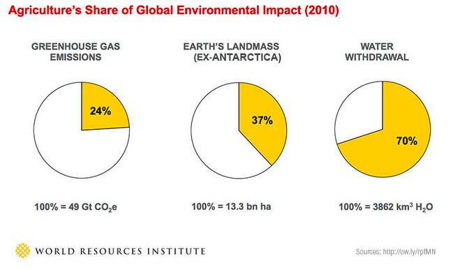 food environment water chart