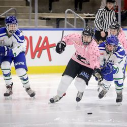 Buffalo Beauts defender Sarah Edney tries to use her body to protect the puck.