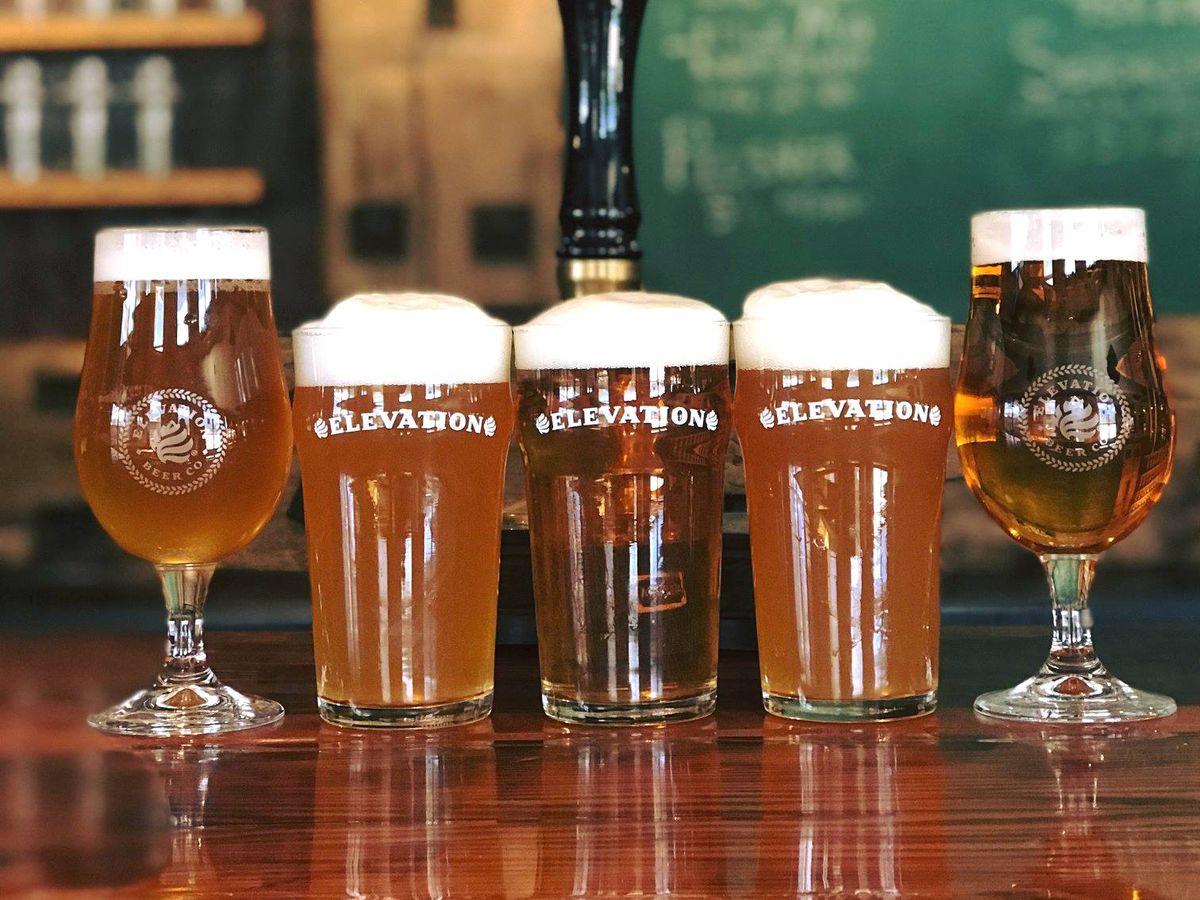 Pints of Elevation Beer Co beers