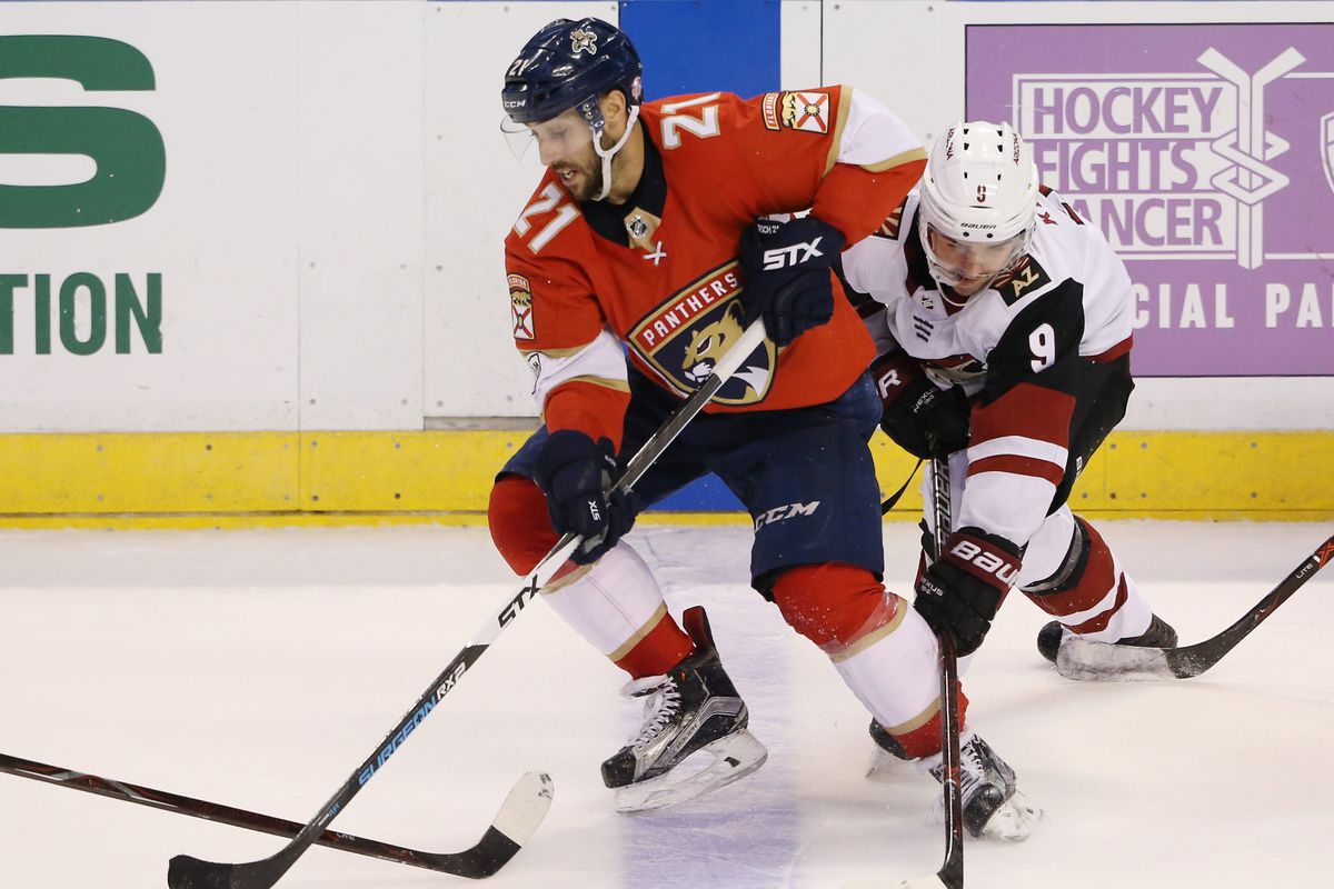 Image result for panthers vs coyotes