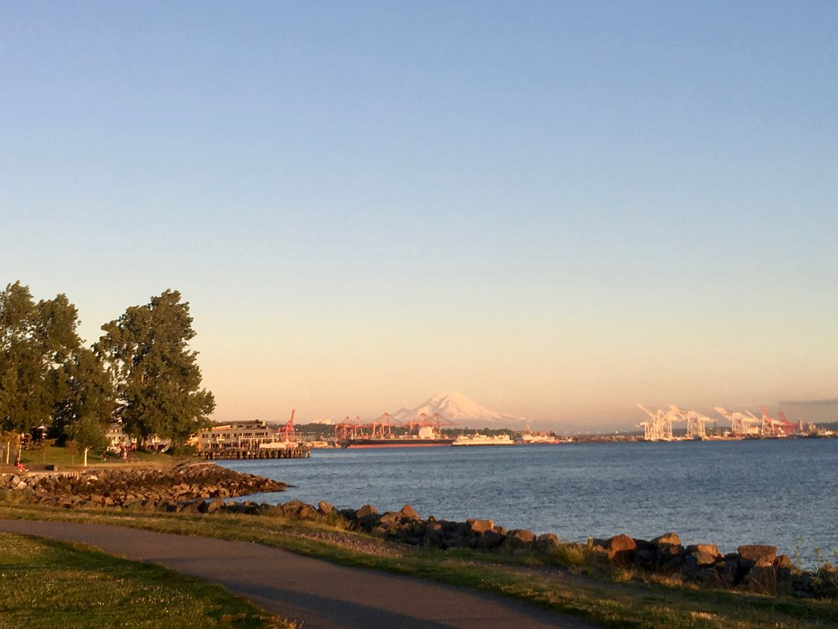 A concrete path runs along the rocky shoreline of a bay. In the distance is a small grove of trees. In the far distance, industrial cranes and the view of a mountain.