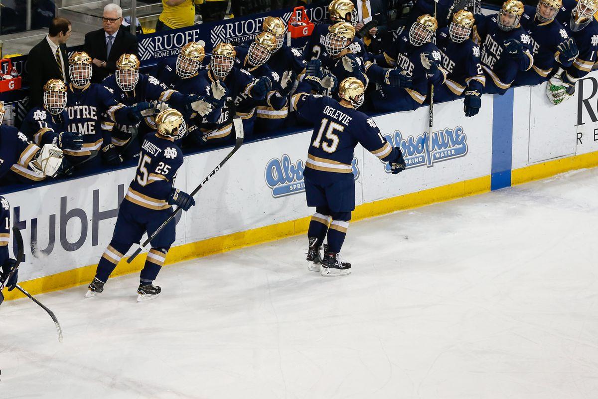 COLLEGE HOCKEY: JAN 05 Notre Dame at Michigan