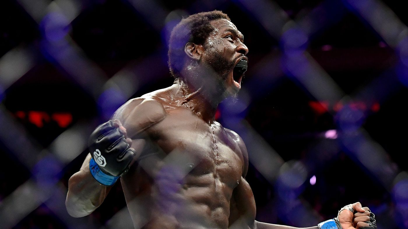 Anderson Silva vs Jared Cannonier full fight video preview for UFC 237 co-main event