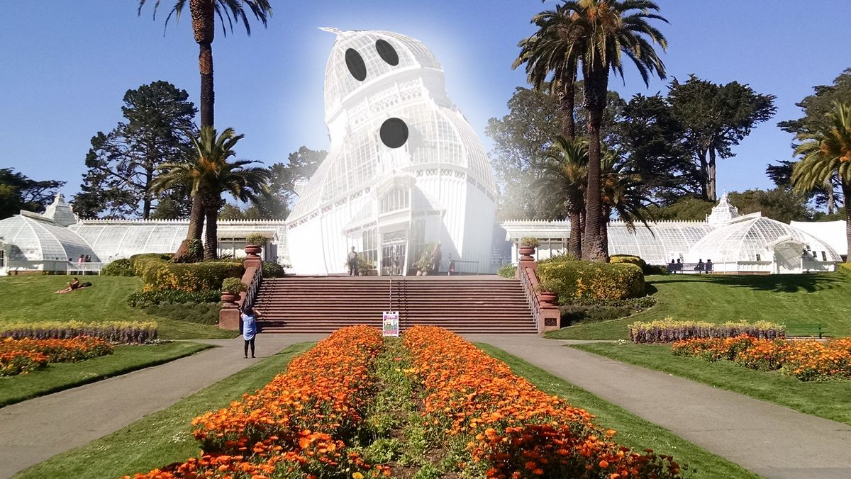 the conservatory of flowers adopts a haunting new look for halloween a historic sf house