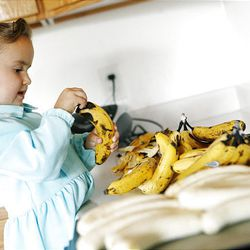 In her family's home on the YFZ Ranch, Gloria Barlow, 3, peels bananas to be sliced up and dried for snacks.