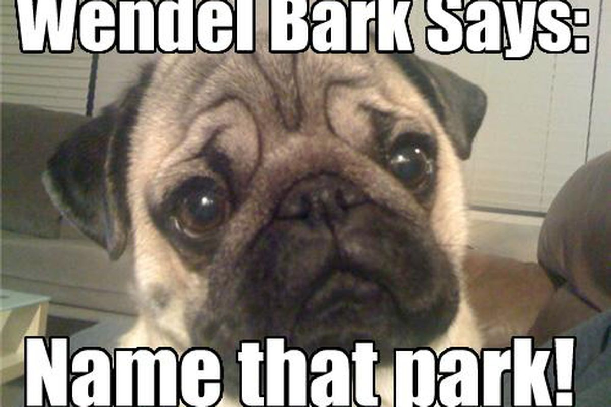 His wrinkles contain the truth and a foul smelling secretion.