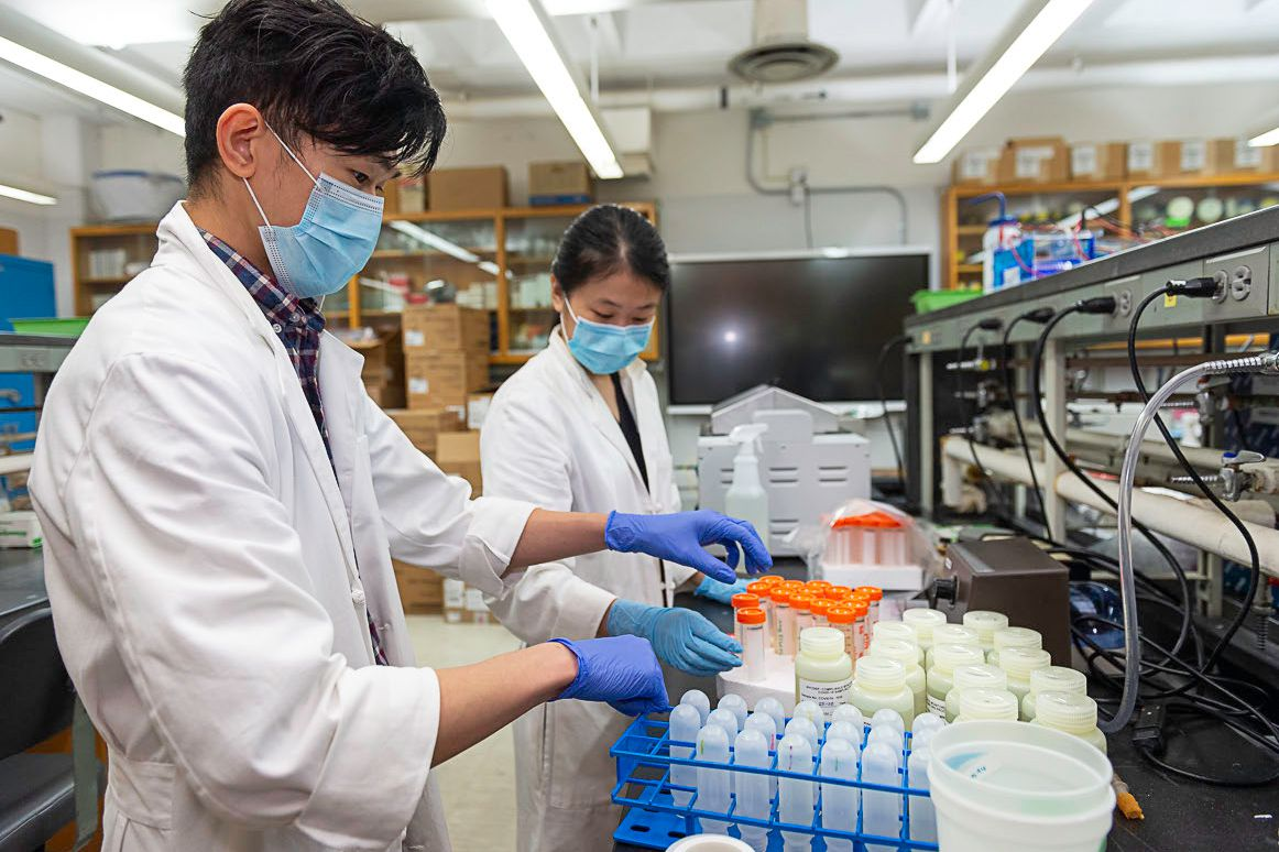 A team of virologists from CUNY's Queens and Queensborough colleges test wastewater for COVID variants.