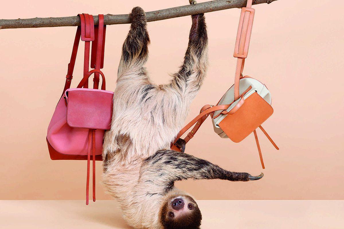 "Photos: <a href=""http://www.purseblog.com/savvy/spring-2015-mansur-gavriel-debut-adorable-lookbook-e-commerce-re-launch/"">Purse Blog</a>"