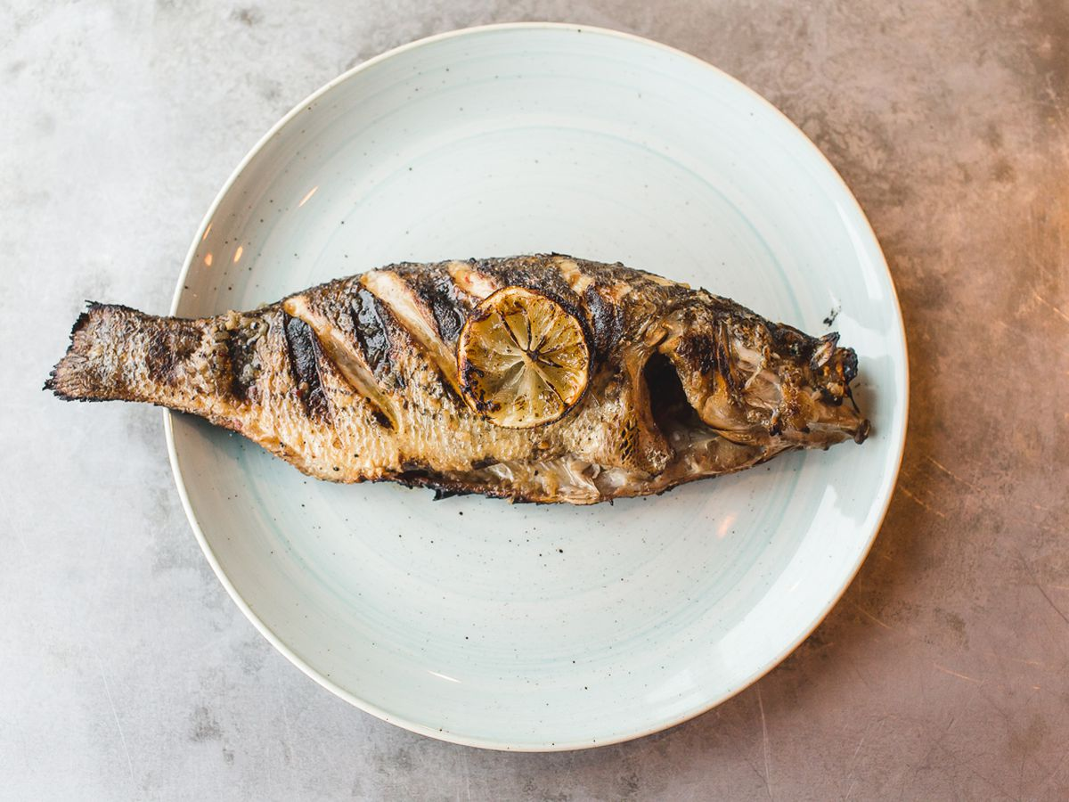 Seafood Restaurants In Denver Colorado Best Restaurants