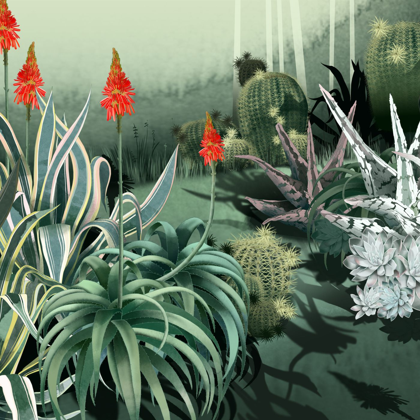 cefca0f0ba4 Consider the Cactus: How Succulents Took Over Instagram—and Then the World