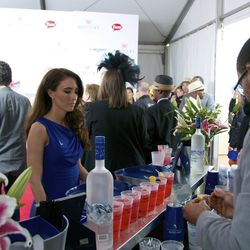 Walkers of the red carpet were handed a drink from Grey Goose to refresh as they went to their seats.