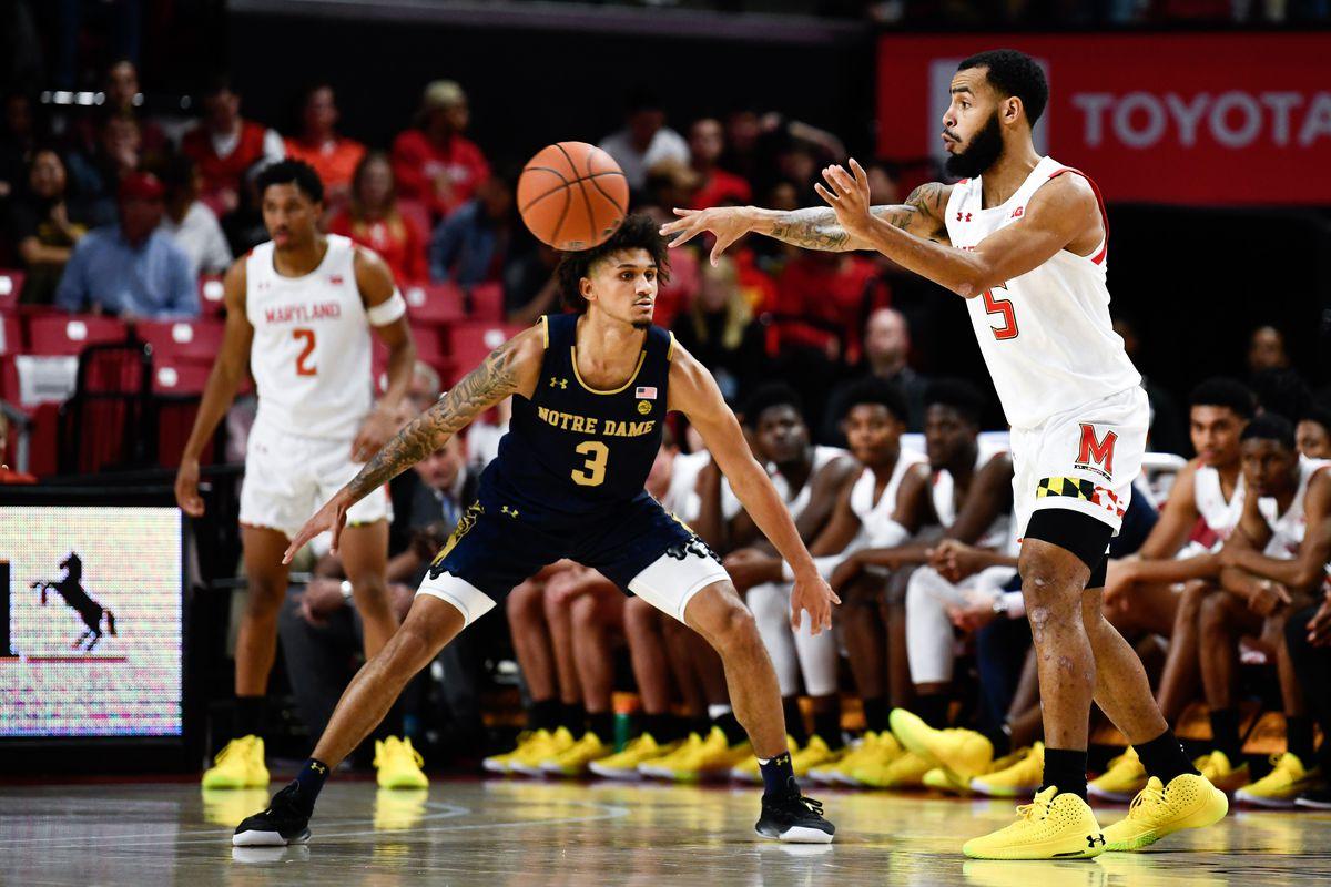 Eric Ayala, Notre Dame, Maryland basketball