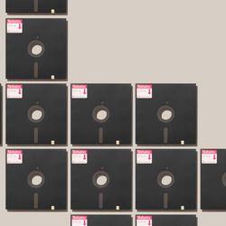 """8"""" floppy disks"""