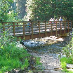 1. Just down the hill from the White Pine parking lot is the footbridge, which crosses Little Cottonwood Creek.