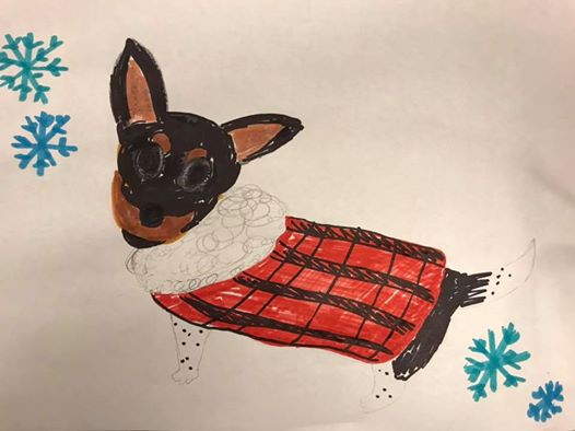 Humane Society Offering Terrible Drawings Of Your Pets For Donations