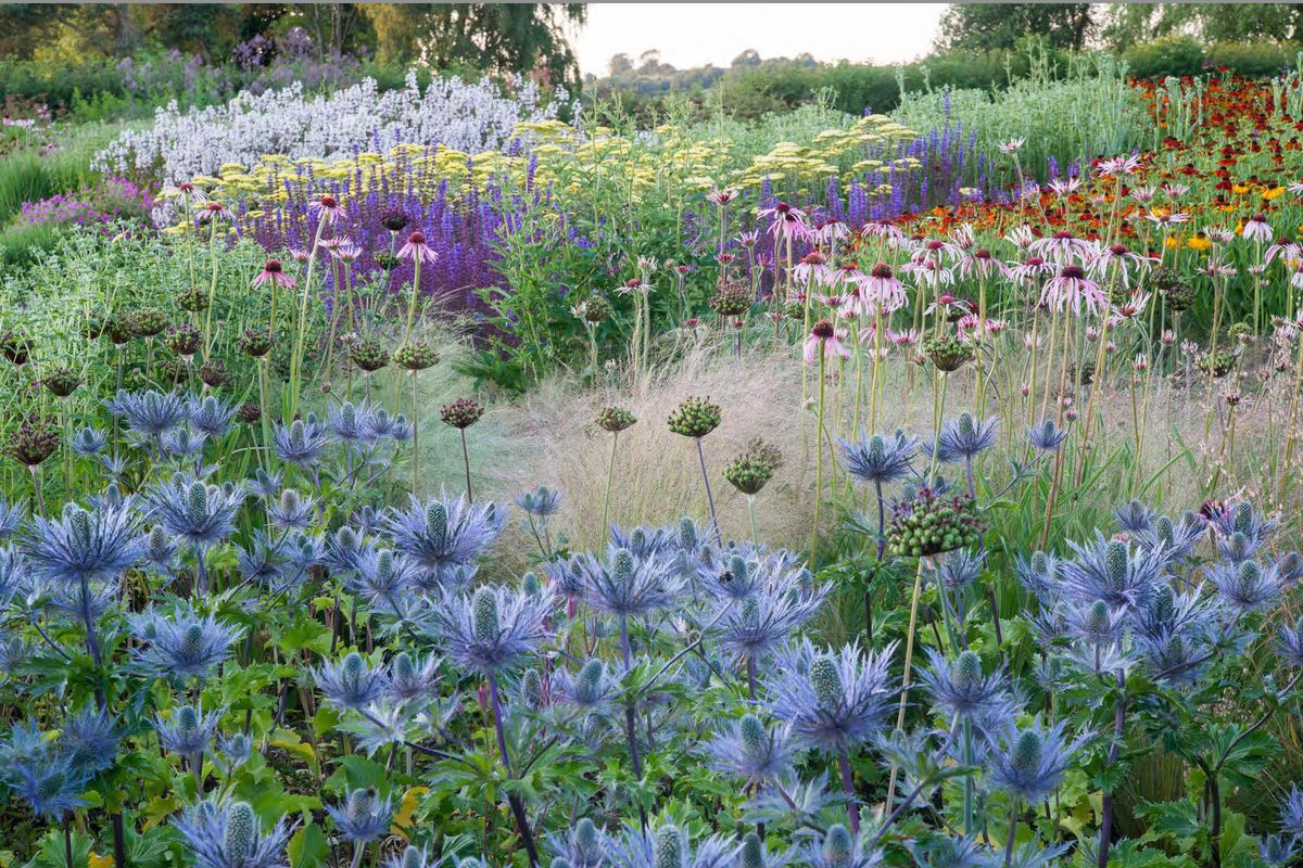 Acclaimed Garden Designer Piet Oudolf To Speak About