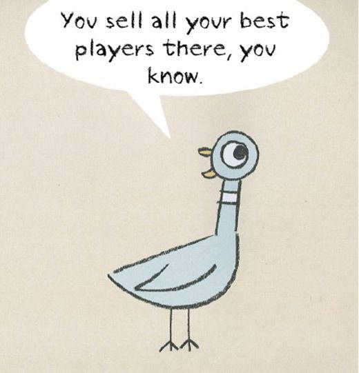 pigeon-12