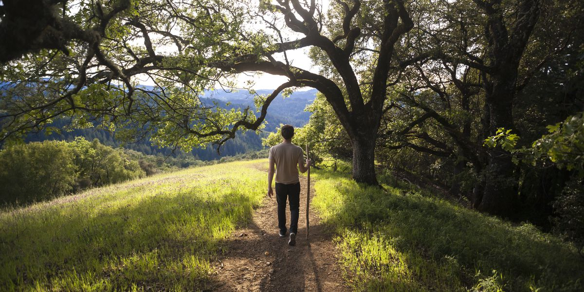 7 scenic wine country hikes you shouldn't miss