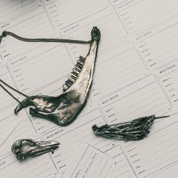 """""""For the first collection, I took apart a fish I bought at the store, and this is its head.  And this is from a sheep jaw, and that's a little bird beak, which I found in a park in London. I just had the bones—ew, no, I did not take the flesh off. With th"""