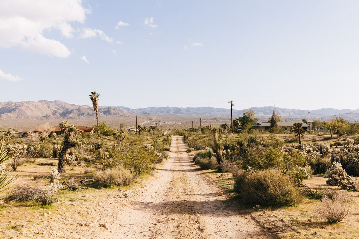 A shot of a Nienaber's long, dirt driveway that stretches out to a mountain view.