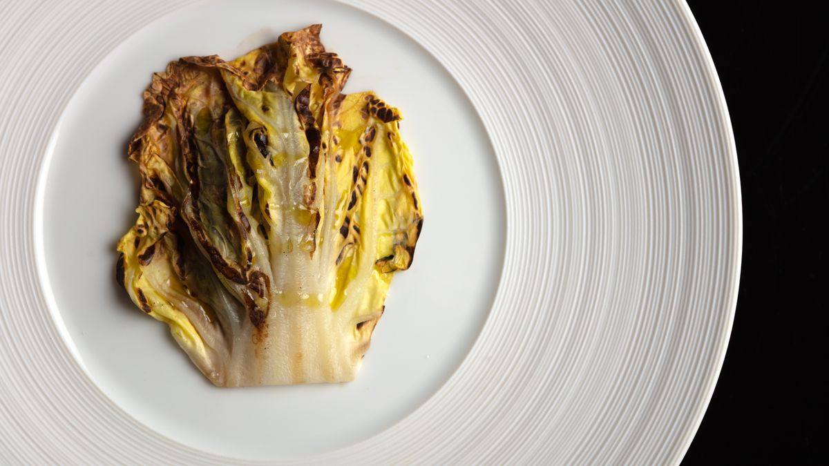 Cabbage burned on a plate from Dialogue