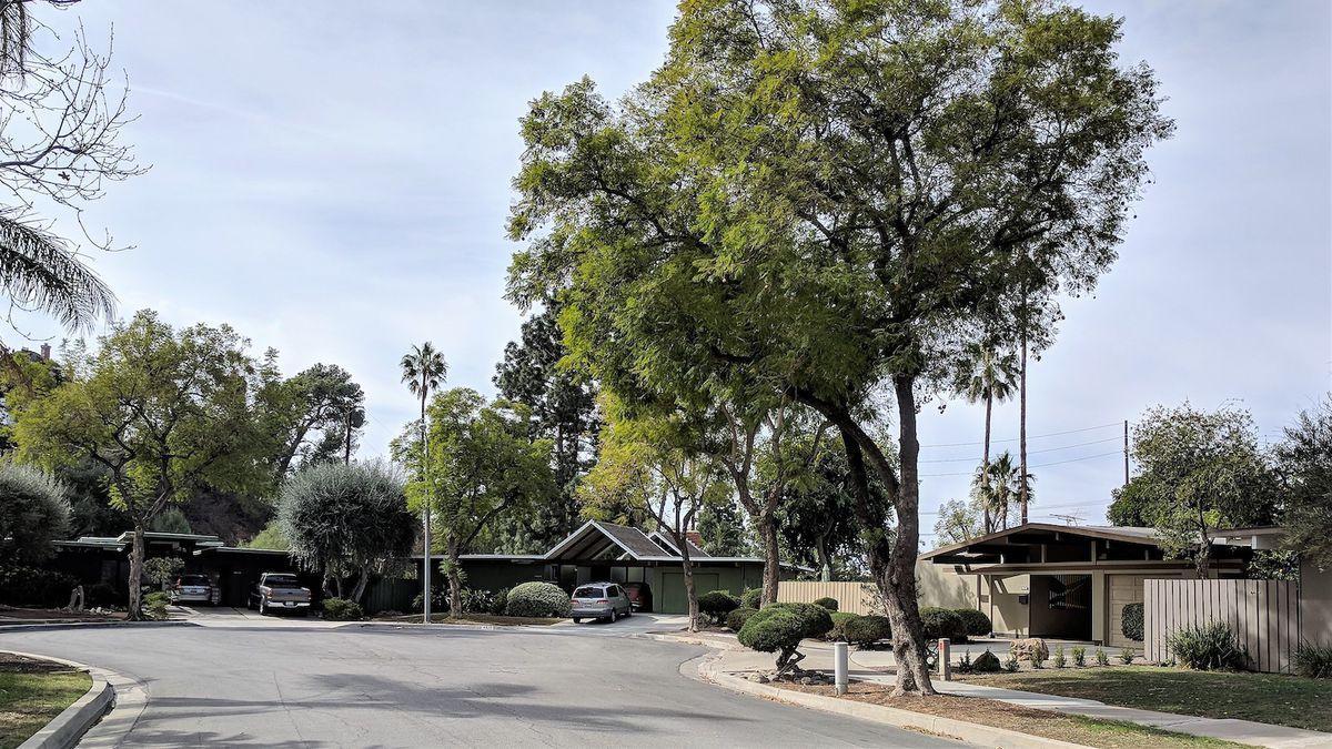 Modernist homes on tree lined street