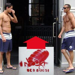 Disturbing thought: These guys are not wearing much clothing. Where are the bed bugs hiding?