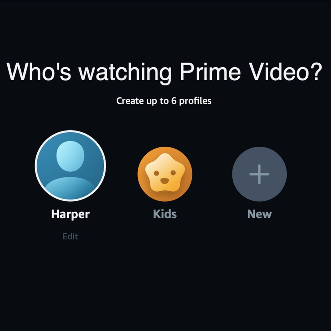 Amazon Prime Video Is Introducing Individual User Profiles The Verge