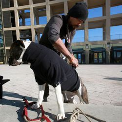 Elrich Damon puts a sweater that he found at the Community Coat Exchange on his dog DoJah in the Salt Lake City Library Plaza in Salt Lake City on Friday, Nov. 29, 2013.