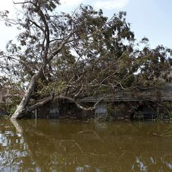 A tree falls against a home after Hurricane Isaac passed the area in Braithwaite, La., Saturday, Sept. 1, 2012.  While New Orleans streets were bustling again and workers were returning to offshore oil rigs, thousands of evacuees couldn't return home to flooded low-lying areas of Louisiana and more than 400,000 sweltering electricity customers in the state remained without power.