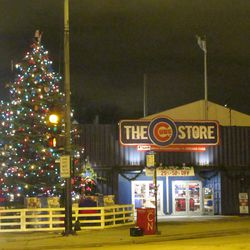 6:05 p.m. The Cubs Christmas tree was up, with the lights turned on -