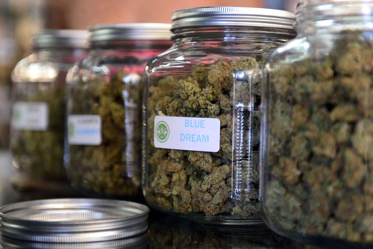 Blue Dream could be heading to Vermont.