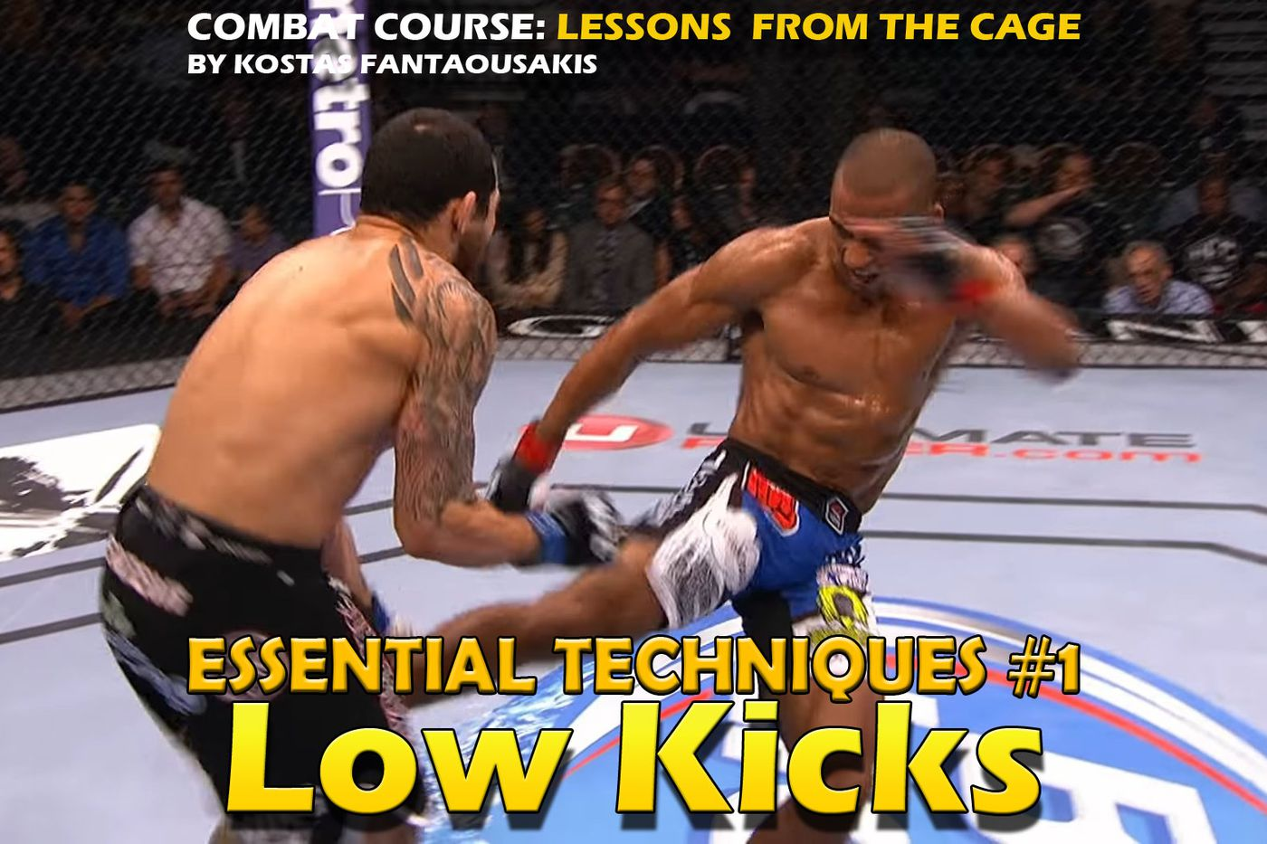 MMA Essential Techniques: Low kicks & Sweeps - Bloody Elbow