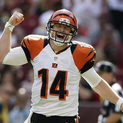 Cincinnati Bengals quarterback Andy Dalton reacts to a touchdown pass to wide receiver Andrew Hawkins during the second half of an NFL football game against the Washington Redskins in Landover, Md., Sunday, Sept. 23, 2012. The Bengals defeated the Redskins 38 - 31.