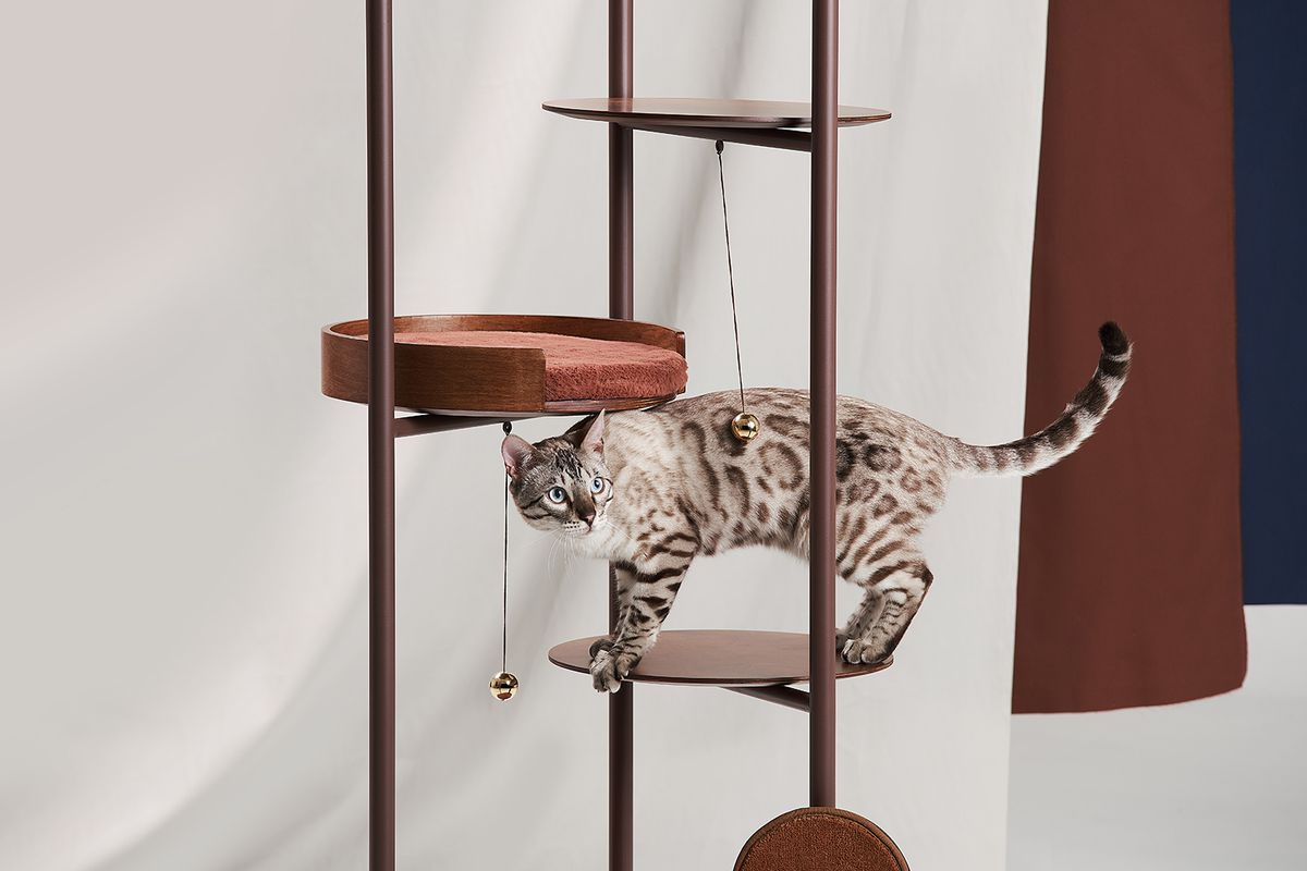 Cat Tree From Jiyoun Kim Embraces Sleek Flexible Design