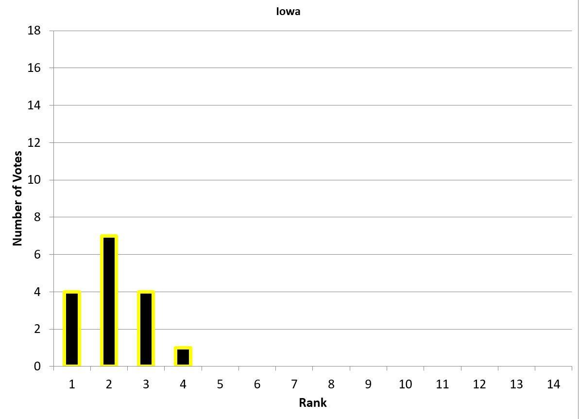 Bar graph representing Iowa's vote breakdown.