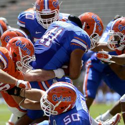 Florida's Hunter Joyer (41) pulls a hosts of defenders as he goes across the goal line during the Orange & Blue football game  in Gainesville, Fla.,  Saturday, April 7, 2012. The blue team defeated the orange team 21-20.