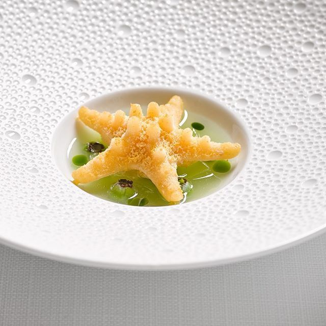 A large, star-shaped sea urchin sits in a broth in a shallow bowl with a wide rim dotted with divots.