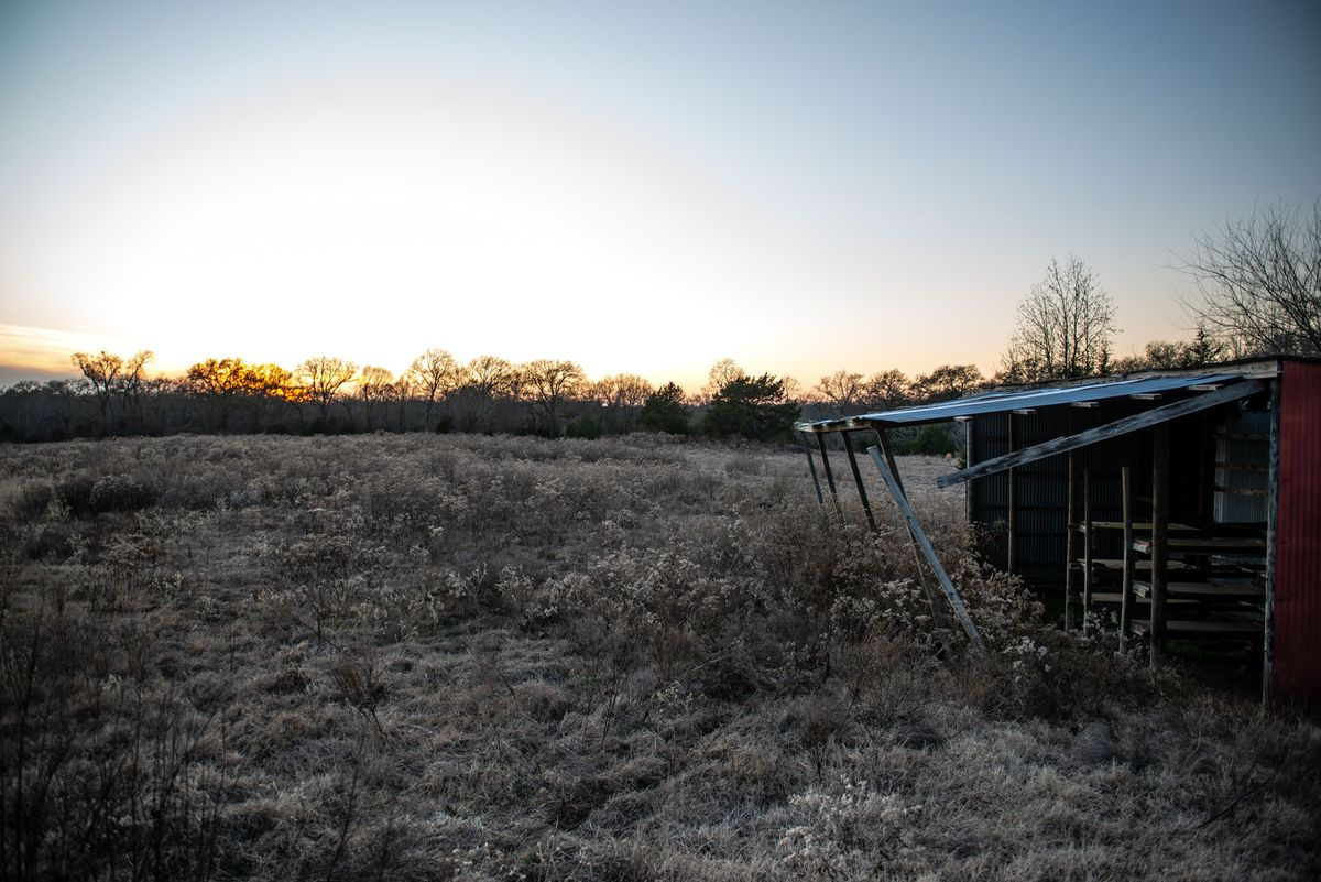 The remote property in Alba, Texas, where Palos Park obstetrician and gynecologist Dr. George Chronis was found dead.