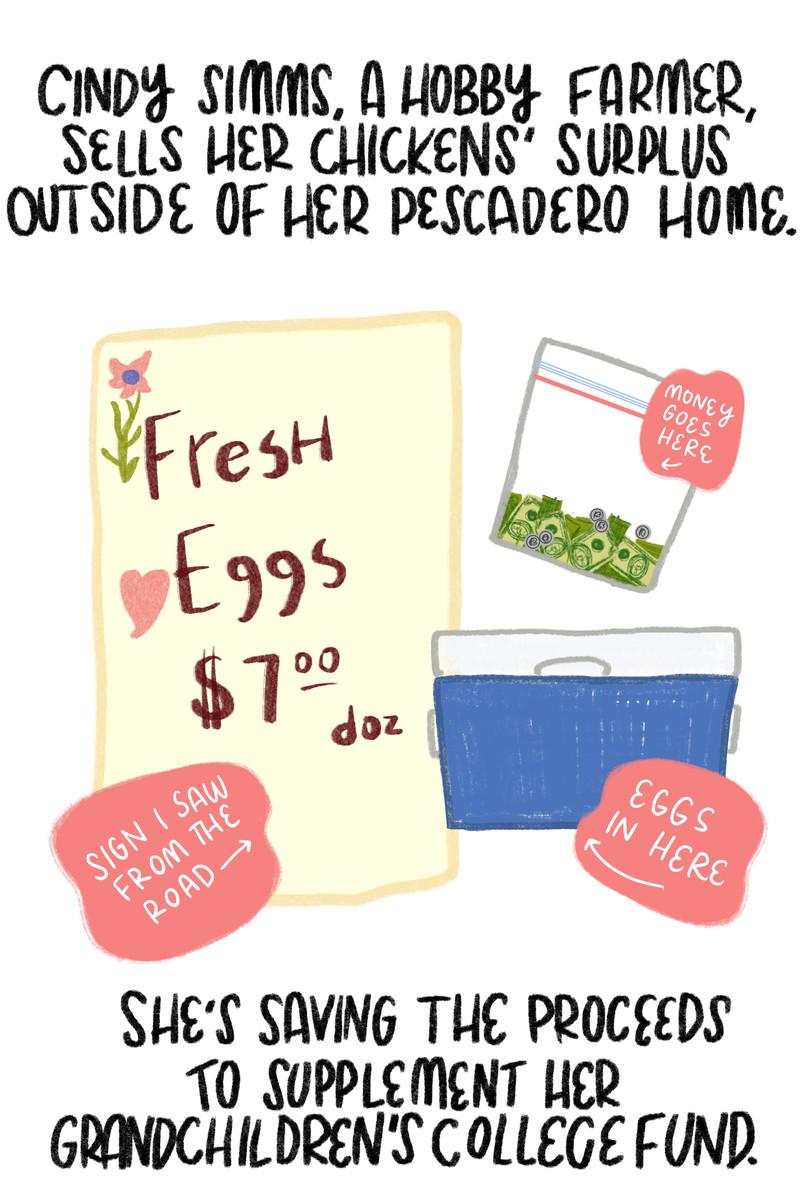 """""""Cindy Simms, một nông dân có sở thích bán gà thừa bên ngoài ngôi nhà Pescadero của cô ấy.  Cô ấy đang tiết kiệm số tiền thu được để bổ sung vào quỹ học đại học của cháu mình """". [Next to the quote, a sign advertising """"Fresh eggs, $7 a dozen,"""" along with a blue cooler full of eggs and a ziploc bag full of cash.]"""