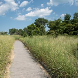 The South Shore Nature Sanctuary. | Colin Boyle/Sun-Times