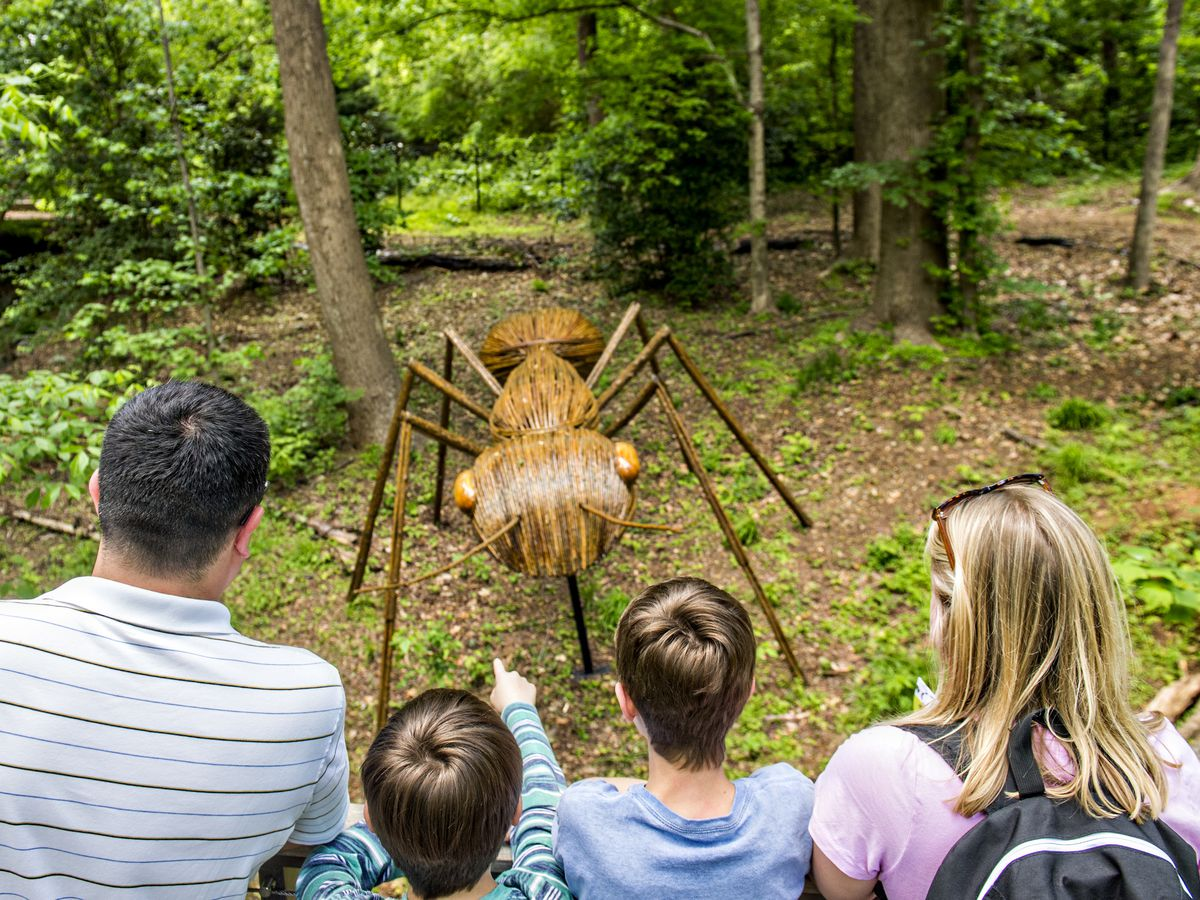 A man, woman, and two small children look at a wooden sculpture of a spider which is situated amongst trees.